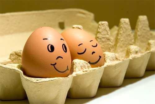 huevos miblogdecosasdivertidas (16)