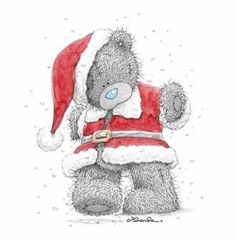 teddy navidad (11)