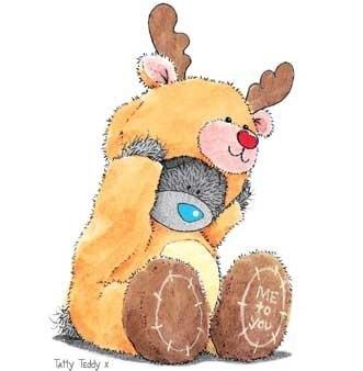 teddy navidad (16)