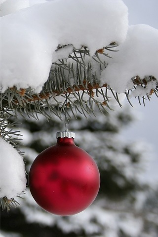 natural-christmas-iphone-wallpaper