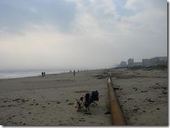 5109 Gulf Coast Beach at Hibiscus St South Padre Island Texas