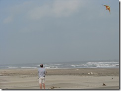 5455 Kite Flying South Padre Island Texas
