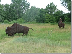 0813 Barbed Wire Buffalo & Indian on Horseback at Sod House Museum Gothenburg NE