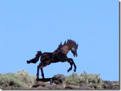5186 Wild Horses Monument WA