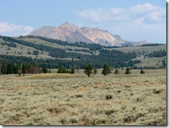 5449 Yellowstone National Park