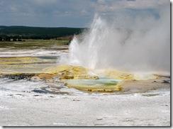 5539 Clepsydra Geyser Yellowstone National Park