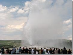 5558 Old Faithful Yellowstone National Park
