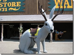 6863 Backyard at Wall Drug Wall SD