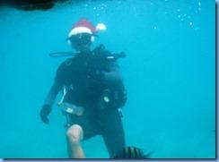 Santa Scuba Diver