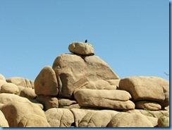 3003 Jumbo Rock Joshua Tree National Park CA