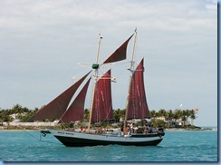 7294 Key West FL - Conch Tour Train 1st stop Mallory Square