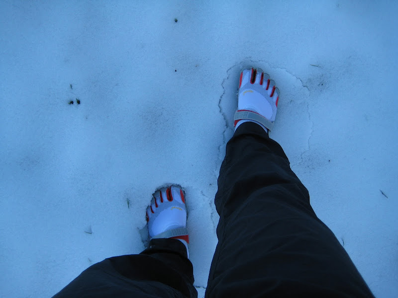 Schnee oh je