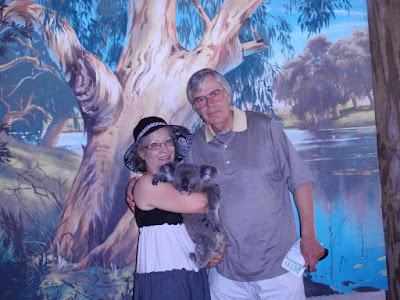 Demon the Koala, Cairns Tropical Zoo