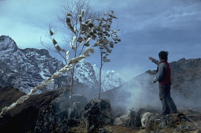 Everest - Sherpa boy dedicates a prayer flag tree