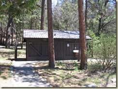 Wawona campground Yosemite2
