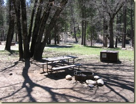Wawona campground Yosemite