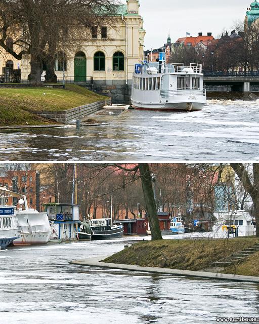 Högt vatten i Fyrisån nedanför Stadsträdgården