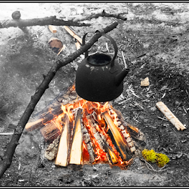 Coffee Time by Griff Johnson - Food & Drink Cooking & Baking ( kettle, winter, wood, logs, coffee, snow, finland, fire )