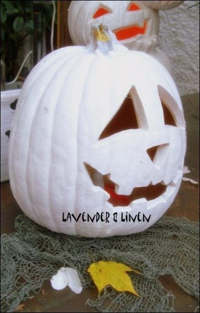 Halloween 2010 175-1