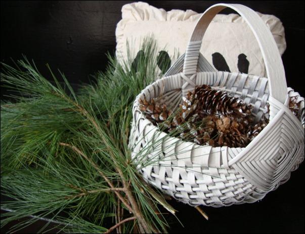christmas cactus 011