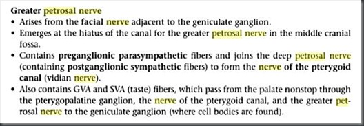greater petrous nerve