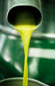 Olio extravergine d'oliva taggiasca. credits: Ferruccio Carassale
