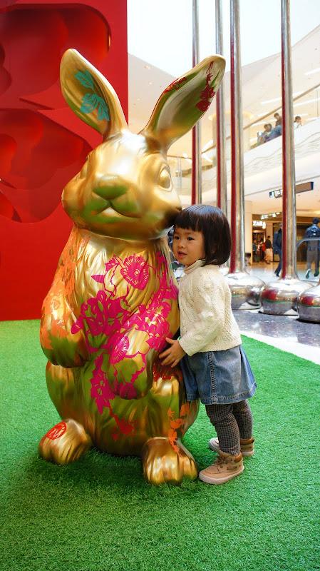 金兔抱抱- 新手貼