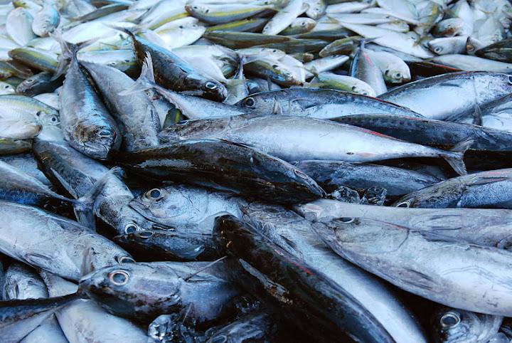 Рыба на субботнем рынке на острове Ланта, Таиланд
