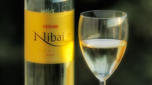 wino_cesari_nibai_j