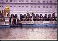 Golden Temple - pilgrimer på vei til det helligste