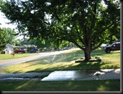 Stevensville - Watering