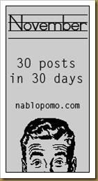 November NaBloPoMo
