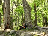 Resting in the forest near Los Perros