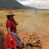 Soil oven