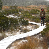 Snow in Lewis Pass