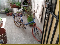 bici CIC 1