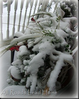 Snow Days4