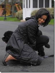 President Obama Dog