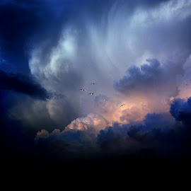 Evening Storm by Sandy Hurwitz - Landscapes Cloud Formations ( tx, sunset, storm cloud ds, geese )