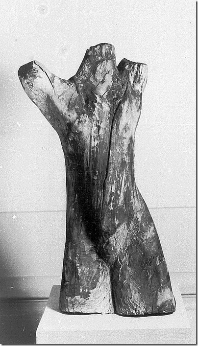joachim sandler-napalm 1968