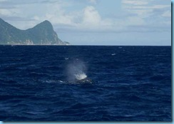 Dominica 064