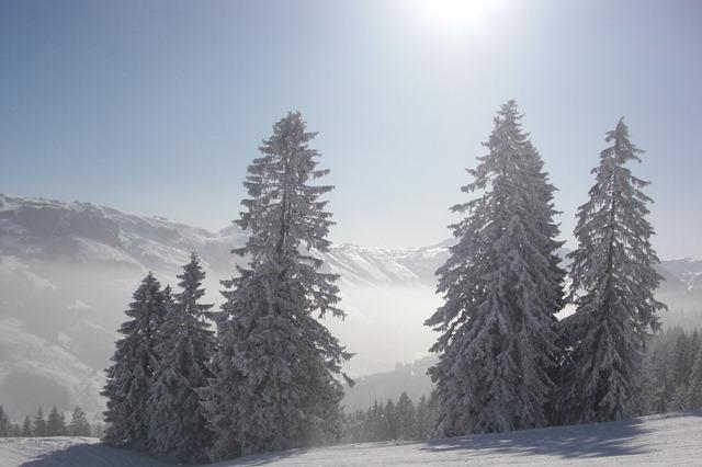 02 February Westendorf