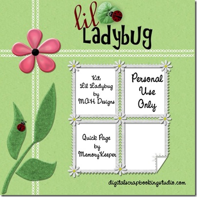 mah_ladybug_MKQP1_prev