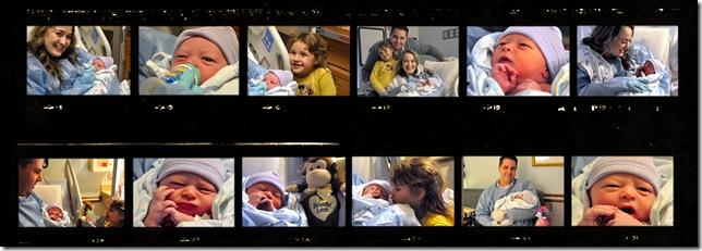 newbornbrody