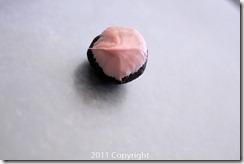 Teacher Appreciation Week - Cake Pops  (5 of 14)
