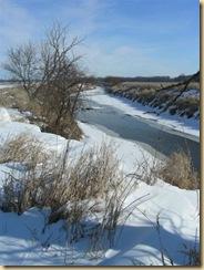 eagle marsh, feb 1, 09 (11) (Medium)