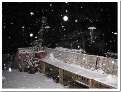 December 2010 012