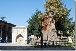 Turkia 2009 - Estambul - Palacio de Topkapi - 094