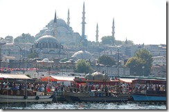 Turkia 2009 - Estambul  -  Mezquita de Suleiman    289