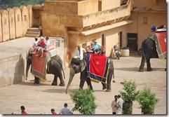 India 2010 -   Jaipur - Fuerte  Amber , 15 de septiembre   83